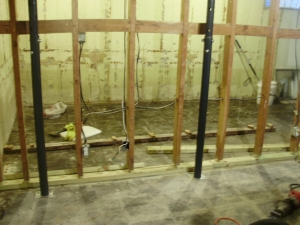 Basement after demo.